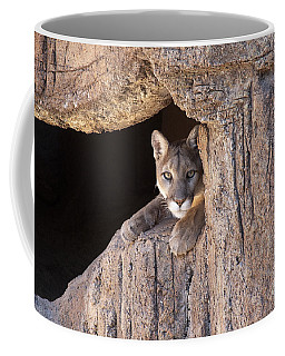 Watchful Eyes Coffee Mug