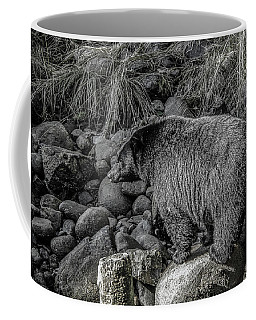 Watching Black Bear Coffee Mug