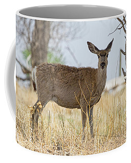 Watching From The Woods Coffee Mug by James BO Insogna
