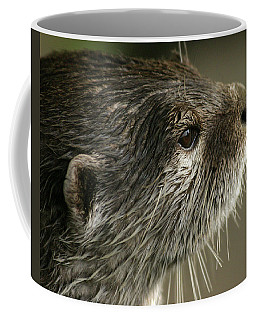 Watching Otter Coffee Mug