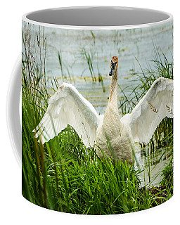 Coffee Mug featuring the photograph Watching Over by Steven Santamour