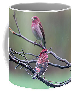 Coffee Mug featuring the photograph Watching Over You by Susan Capuano