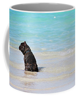 Coffee Mug featuring the photograph Watching The Waves by Amee Cave