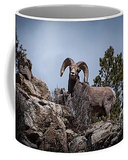 Watching You Watching Me Coffee Mug