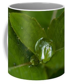 Water Ball Coffee Mug