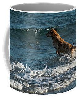 Water Dog Delray Beach Florida Coffee Mug