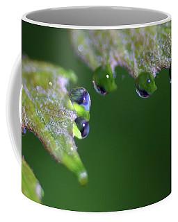 Coffee Mug featuring the photograph Water Droplet IIi by Richard Rizzo