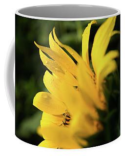Water Drops And Sunflower Petals Coffee Mug