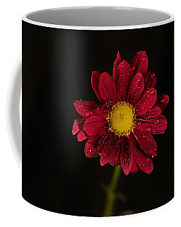 Coffee Mug featuring the photograph Water Drops On A Flower by Jeff Swan