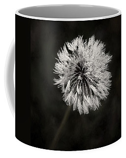 Water Drops On Dandelion Flower Coffee Mug