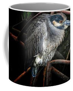 Water Fowl Iv Coffee Mug
