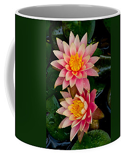 Water Lilies Coffee Mug by Brent L Ander