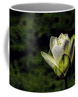 Water Lily 3 Coffee Mug