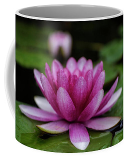 Water Lily After Rain Coffee Mug