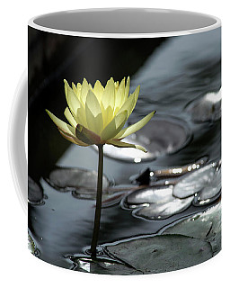 Water Lily And Silver Leaves Coffee Mug
