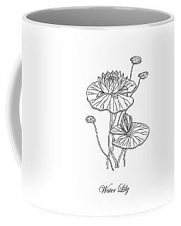Water Lily Flower Botanical Drawing  Coffee Mug