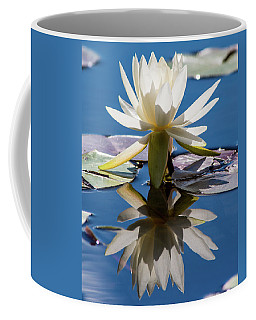 Coffee Mug featuring the photograph Water Lily by Mary Hone