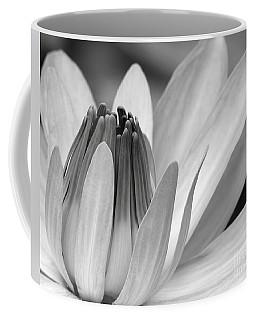 Water Lily Opening Coffee Mug