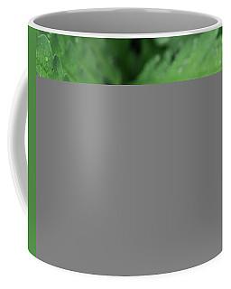 Water On The Fronds Coffee Mug