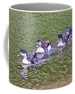 Water Parade Coffee Mug by Kay Lovingood