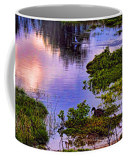 Water Scene Beauty 3 Coffee Mug