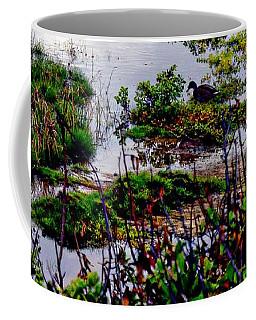 Water Scene Beauty 4 Coffee Mug