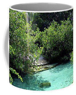Coffee Mug featuring the photograph Water Shallows by Francesca Mackenney