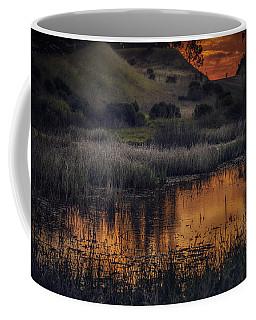 Waterbird Preserve Sunrise Coffee Mug