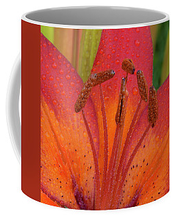 Coffee Mug featuring the photograph Watered Lily by Jean Noren