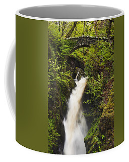 Waterfall Aira Force Coffee Mug