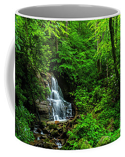 Coffee Mug featuring the photograph Waterfall And Rhododendron In Bloom by Thomas R Fletcher