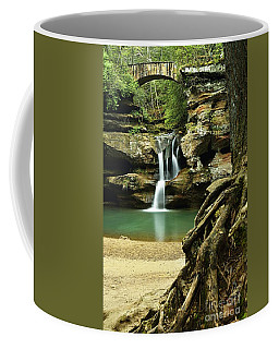 Waterfall And Roots Coffee Mug