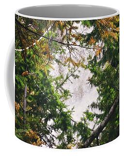 Waterfall Calling My Name Coffee Mug