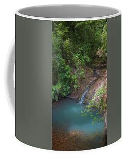 Waterfall Great Barrier Island New Zealand Coffee Mug