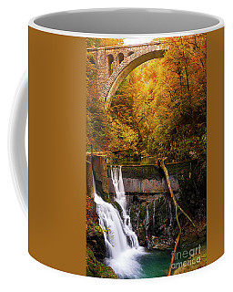 Waterfall In An Autumn Canyon Coffee Mug