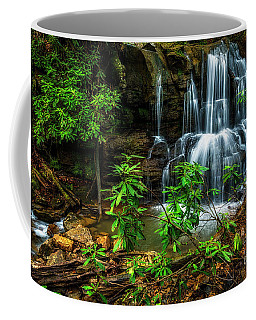 Coffee Mug featuring the photograph Waterfall On Back Fork by Thomas R Fletcher