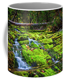 Coffee Mug featuring the photograph Waterfall Over Mossy Rocks by Elena Elisseeva