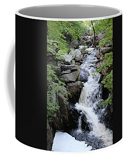 Waterfall Pillsbury State Park Coffee Mug