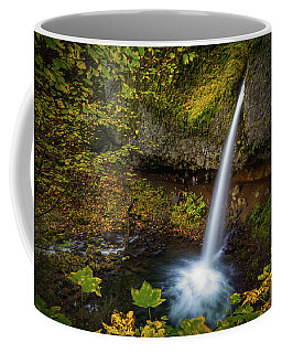 Coffee Mug featuring the photograph Waterfalls And Autumn Leaves by William Lee