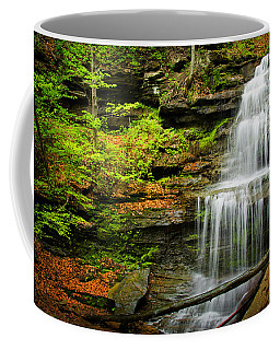Waterfalls On Little Three Mile Run Coffee Mug