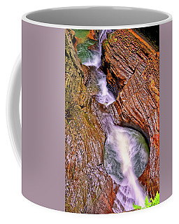 Watkins Glen - Rainbow Falls 005 Coffee Mug