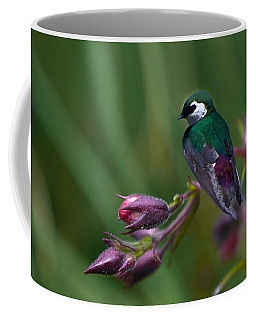 Wavey Perch Coffee Mug