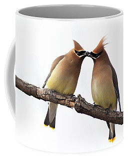 Waxwings In Love Coffee Mug