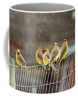 Waxwings In The Rain Coffee Mug