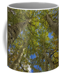 Coffee Mug featuring the photograph Way Up There by Jonathan Nguyen