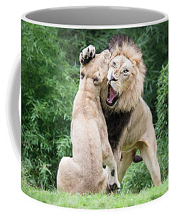 We Are Only Playing Coffee Mug