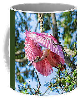 We Have Lift Off Coffee Mug