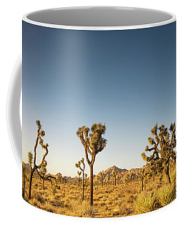 We Love This Sunset Coffee Mug