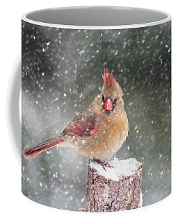Weary Of Winter Coffee Mug