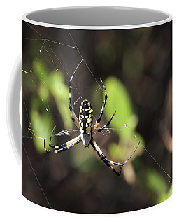 Web Builder Coffee Mug
